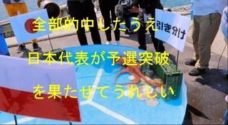 北海道のタコ1.jpg