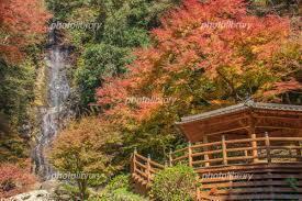 日本の田舎6.jpg
