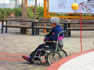 日本の高齢者介護1.jpg